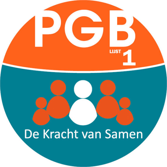 Website verkiezingen 2020